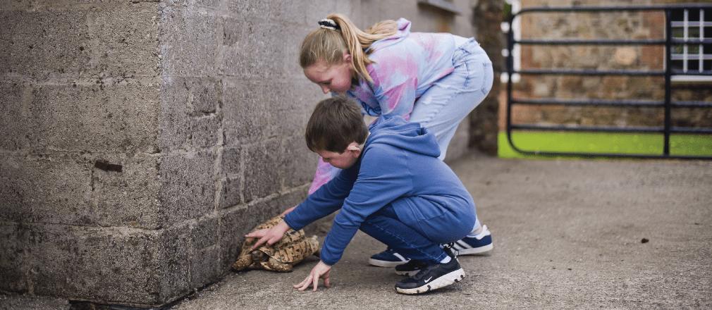 Boy and girl sitting down rubbing a tortoise