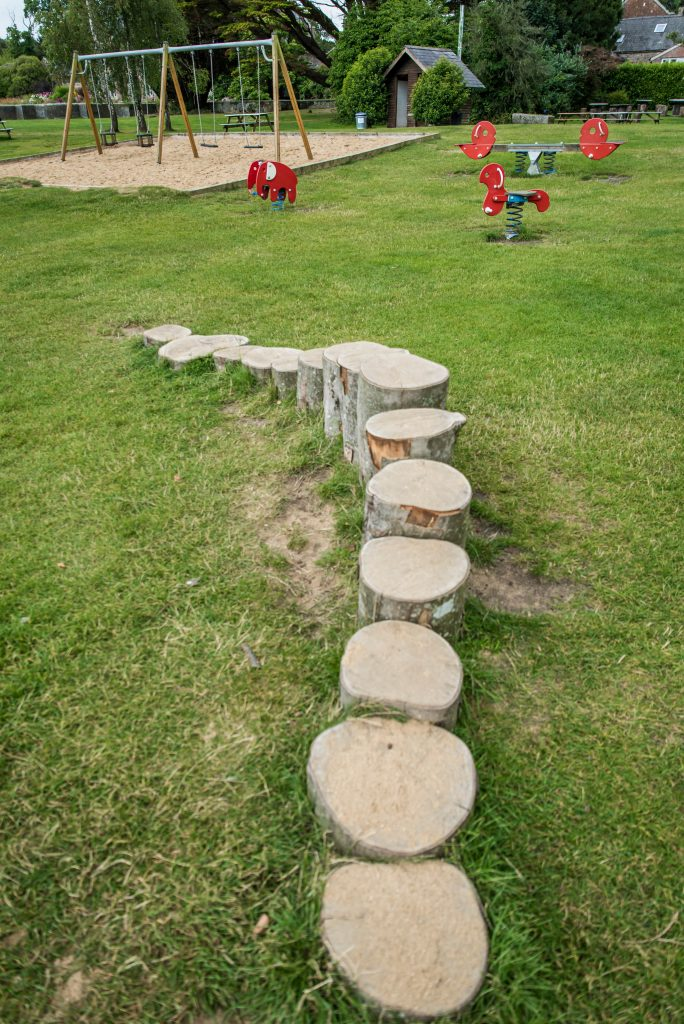 wooden stumps in a row going from shortest to tallest then back to shortest