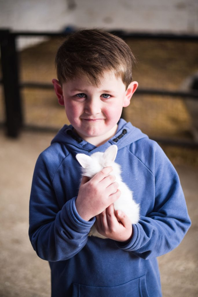 Little boy holding a white kitten