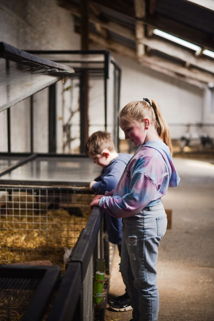 Boy and girl looking down into a cage with hay